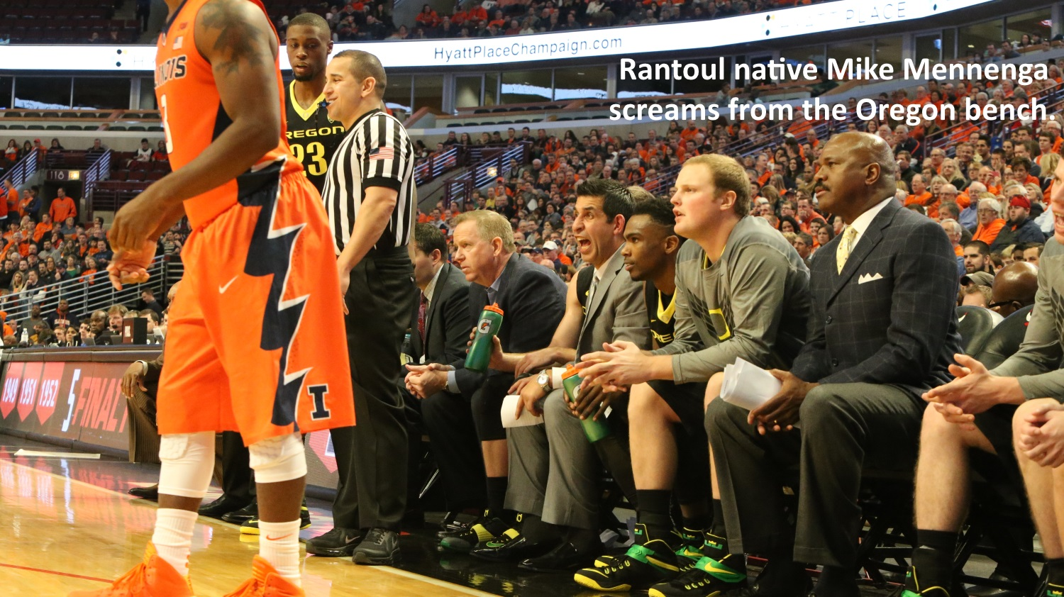 Mike Mennenga screams from Oregon bench