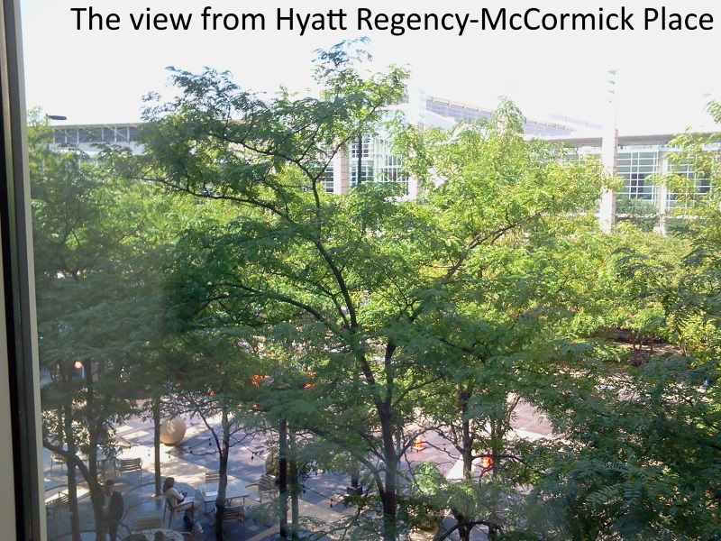 the view from Hyatt Regency-McCormick Place